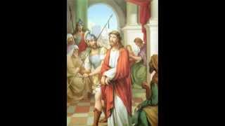 Evagelio Segun San Lucas  completo Primera Parte biblia católica audio dramatizada