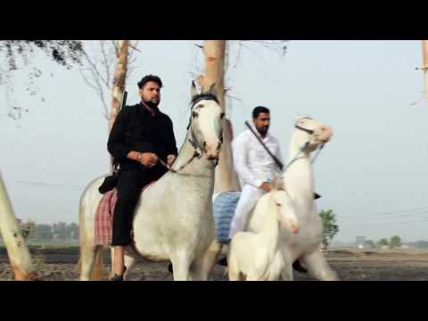 Yaar Bamb | Jass Bajwa | Jatt Sauda | Official Video | Latest Punjabi Songs