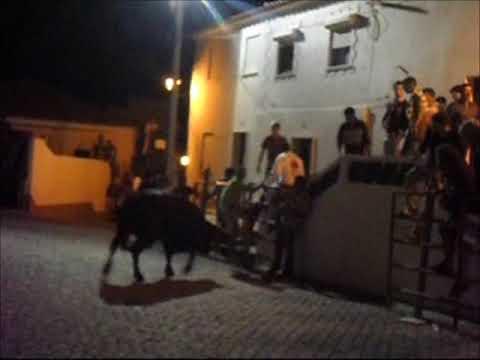 touro na rua amieira 2012