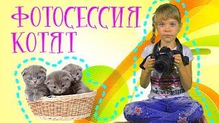 ЛИЗА - ФОТОГРАФ / ФОТОГРАФИРУЕМ КОТЯТ / LISA TAKES PICTURES OF KITTENS