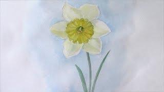 Уроки рисования. как нарисовать весенний цветок. Нарцисс(Как нарисовать Нарцисс ▻ Скачайте видео урок