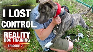 I wish this was never filmed [Reality Dog Training Ep. 7]