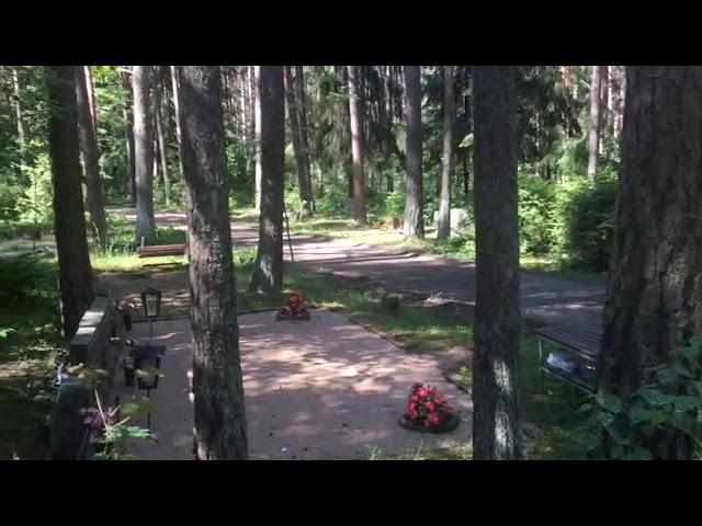 Filosofía en el bosque 16. Pensamientos y conceptos.