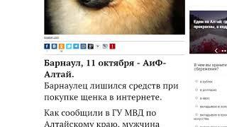 О чем пишут издания «Сибирской медиагруппы» — обзор 15.10.2018