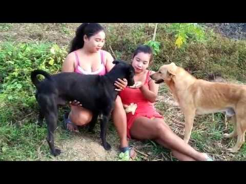 18x+ Beautiful girl Play with smart and cute dog and discover life Part 6 thumbnail