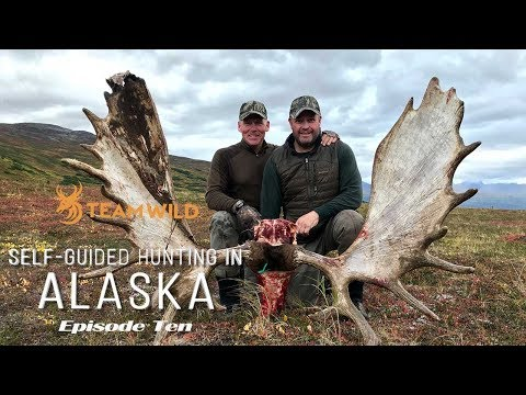 Self-guided Moose & Caribou Hunting In Alaska: Episode 10 - Butchering And Packing Out A Bull Moose