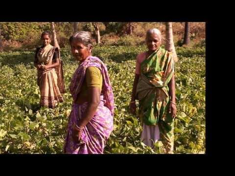 Tamil village song...
