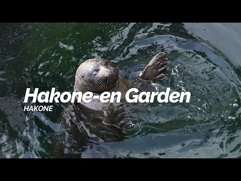 Hakone-en Garden,Hakone   Japan Travel Guide