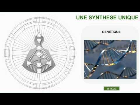 Le Design Humain, une synthèse unique