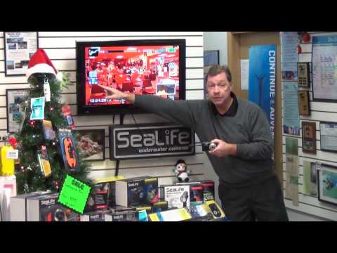 SeaLife Demos | SeaLife Sea Dragon Seminar - Part 1
