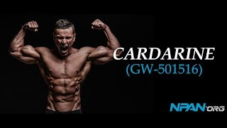 Cardarine - The Ultimate Guide To GW-501516