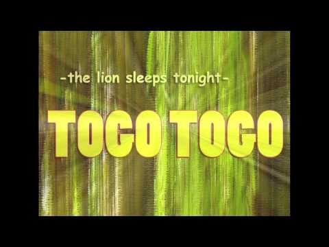 """The Lion Sleeps Tonight""  by  TOGO TOGO"