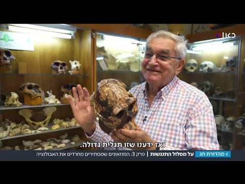 לצנזר את ההיסטוריה: המוזיאונים שמסתירים מחרדים את האבולוציה