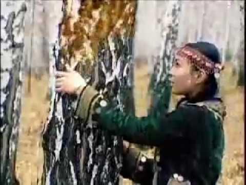 Altai culture - Bashkort Yeri - бащкорт йыры