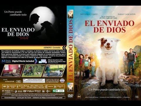 El Enviado Por Dios Pelicula Cristiana En Español Latino
