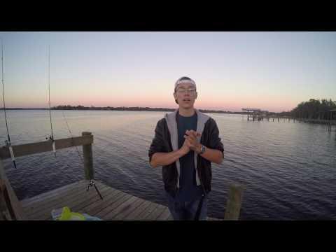 C&C Channel Catfish Jacksonville Florida!