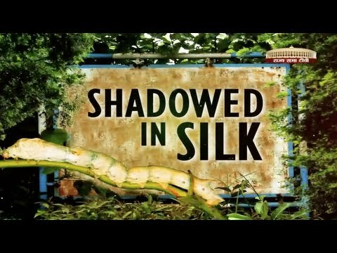 Special Report - Shadowed in Silk