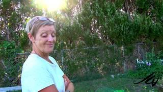 Cindy's Garden Tour - Spring 2019  -   YouTube