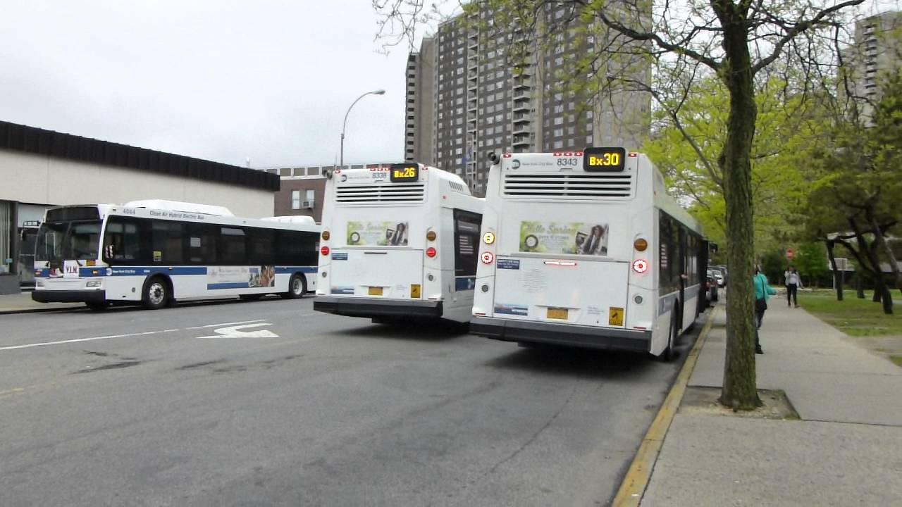 mta nyct bus: 2015 nova-lfs bx30 & bx26 buses #8343 & #8338 at asch