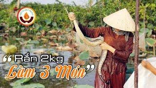 Gambar cover Vô Tình Được Con Rắn Ri Cá To 2kg Khi Đi Giăng Lưới Cá | Vô Mánh Luôn