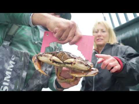 Cooking Your Catch With Baranof Fishing Excursions In Ketchikan, Alaska