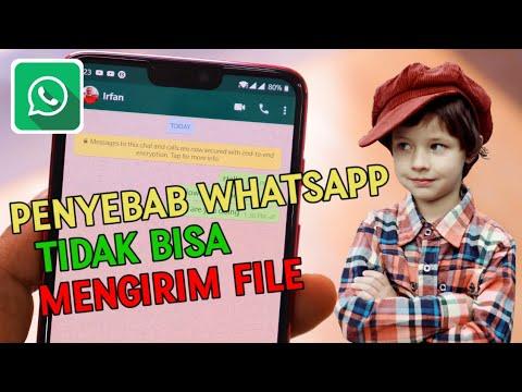 buat teman teman yang mengalami kesulitan mengirim foto video rkaman di whatsapp wa begitupun mengal.