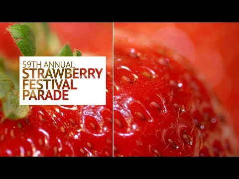 Garden Grove Strawberry Festival Parade 2017