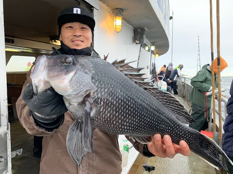 Offshore Jumbo Black Sea Bass Fishing On The Big Jamaica, Brielle NJ 11/14/2019