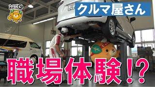 15/47 みきゃん、クルマ屋でお手伝い! thumbnail