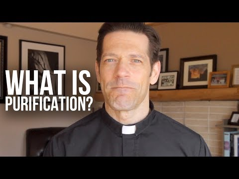 How Does Purification Work?