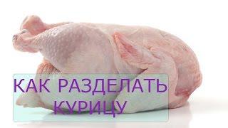 Как разделать курицу. Пособие начинающим кулинарам