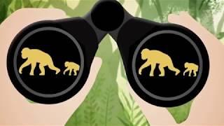 Les nouvelle technologies au service de la protection des chimpanzés