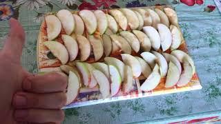 Яблочный пирог / шарлотка / яблочный спас /дачные рецепты #2