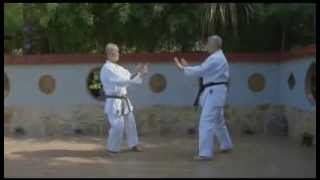 UECHI-RYU KARATE-DO. Lesson № 1. Kata-no Bunkai.
