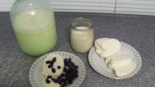 ТВОРОГ ДОМАШНИЙ Рецепт творога. Как приготовить творог из молока.