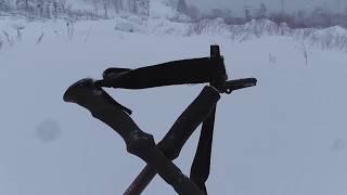 雪山エゾシカ猟に無常を観ずる