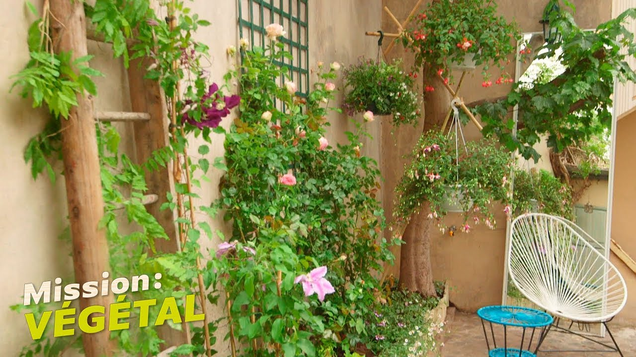 Décorer Un Mur De Jardin en plein dans le mur