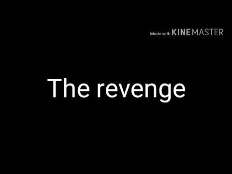 The revenge ( a funny video)