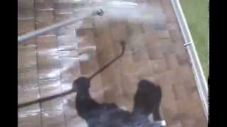 Chuck Bergman:Charlotte County Roof Cleaning Done Properly