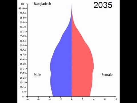 Essay on World Population Growth