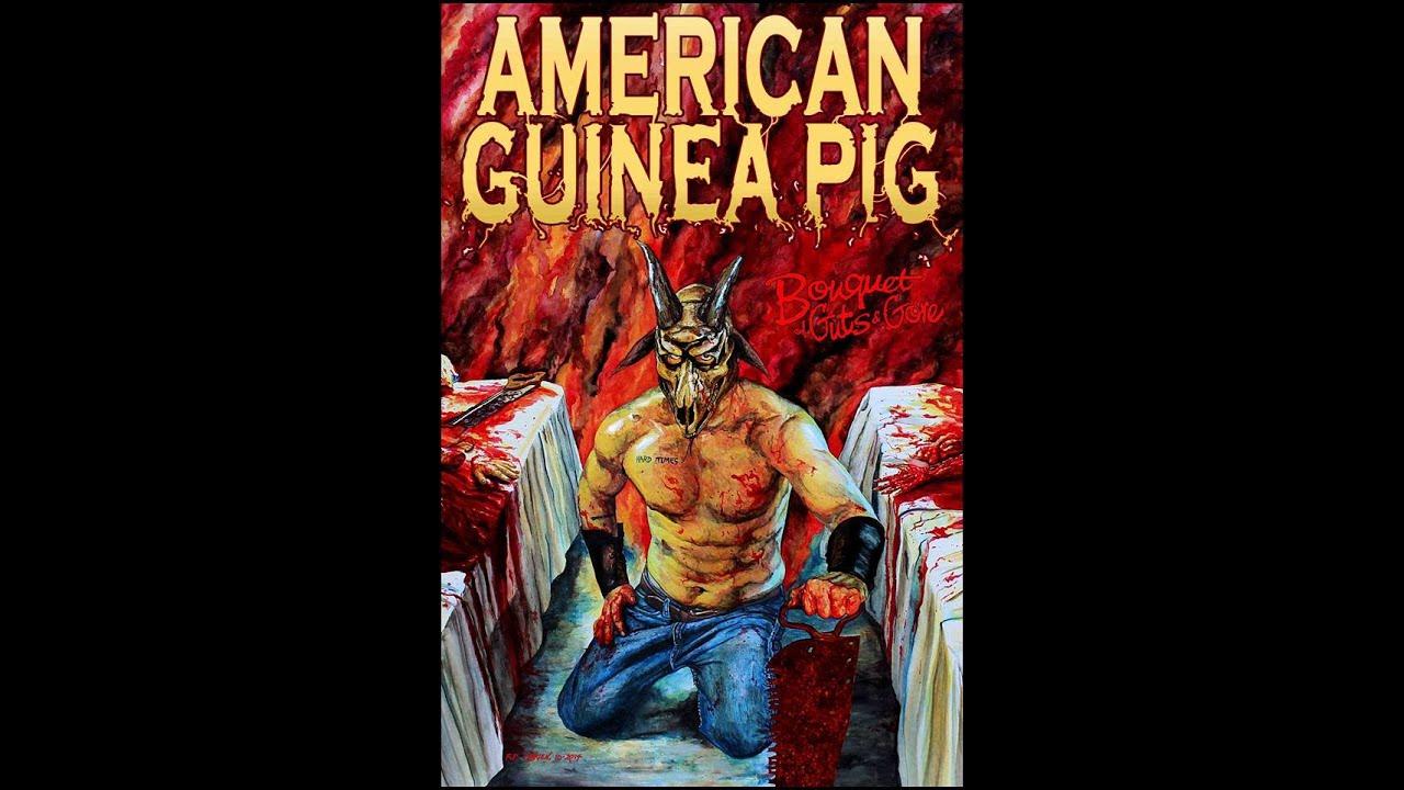 american-guinea-pig-poster