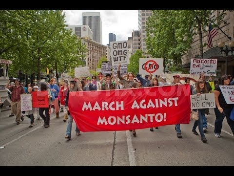 #13: March Against Monsanto with Stella Hunt - Conspiracy Queries with Alan Park