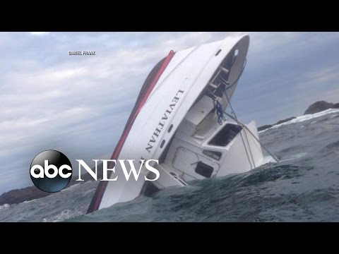 At Least 5 Dead After Whale Watching Tour Boat Sinks