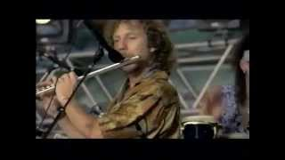 Traffic - Glad / Freedom Rider - 8/14/1994 - Woodstock 94 (Official)
