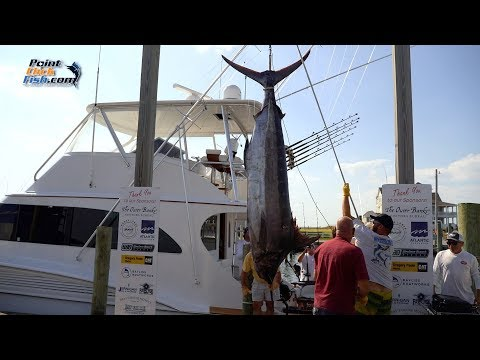 The Governor's Cup Series Explained | Offshore Tournament Fishing