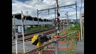 和歌山線227系1000番台普通和歌山行き
