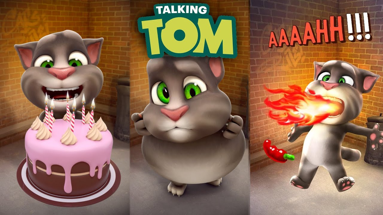Talking Tom Cat App EVERY New Animation YouTube