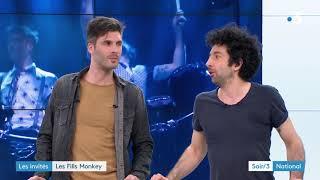 Fills Monkey sur France 3 dans Soir 3