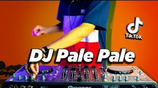 Download DJ PALE PALE VIRAL TIK TOK ! Magic In The Air ( DJ Nansuya & DJ DESA Remix )