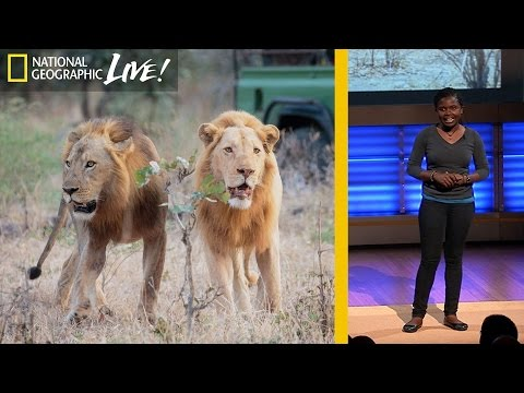 Saving Lions: How I'm Protecting Wildlife in My Homeland | Nat Geo Live